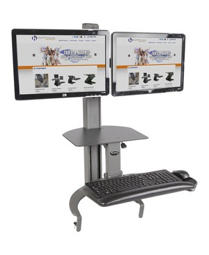 Ergoguys HEALTHPOSTURES TASKMATE DUAL MNTR SIT AND STAND WORKSTATION