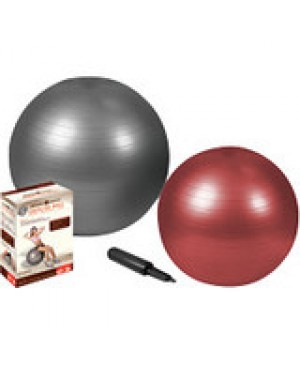 Zenzation Athletics Exercise Ball